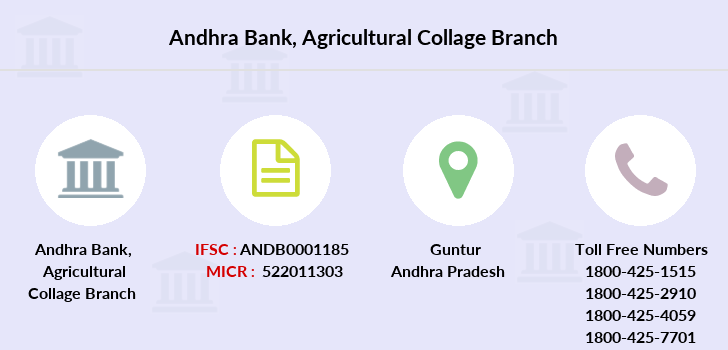 Andhra-bank Agricultural-collage branch