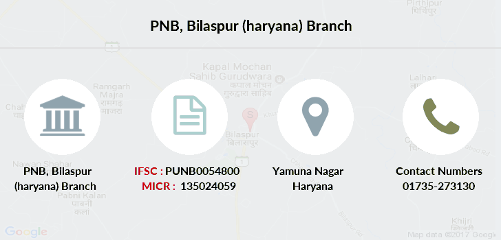 Punjab-national-bank Bilaspur-haryana branch