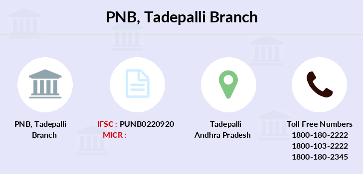 Punjab-national-bank Tadepalli branch