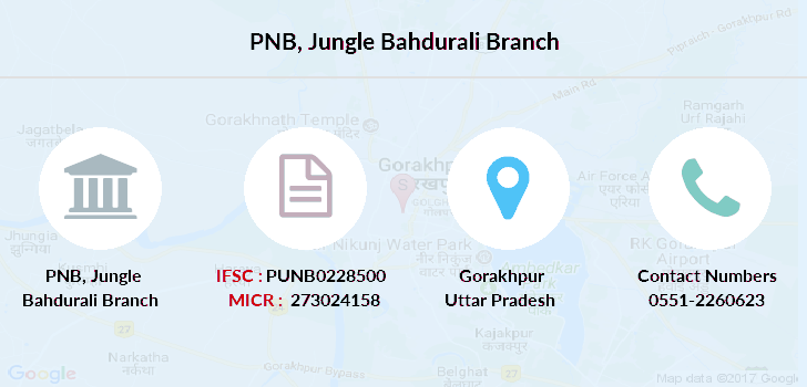 Punjab-national-bank Jungle-bahdurali branch