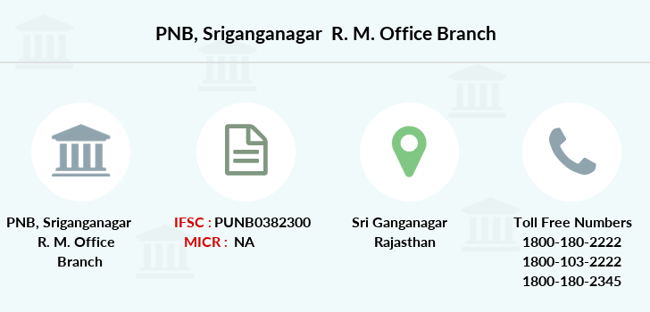 Punjab-national-bank Sriganganagar-r-m-office branch