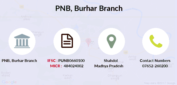 Punjab-national-bank Burhar branch