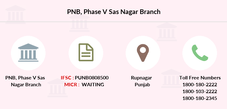 Punjab-national-bank Phase-v-sas-nagar branch