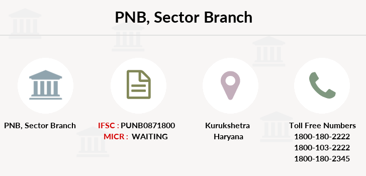 Punjab-national-bank Sector branch