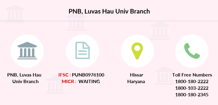 Punjab-national-bank Luvas-hau-univ branch