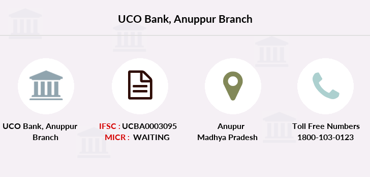 Uco-bank Anuppur branch