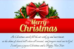 Joyous Christmas & Happy New Year