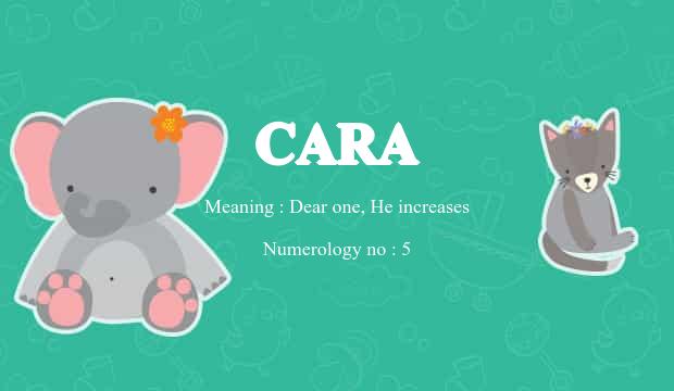 13++ Cara name meaning information