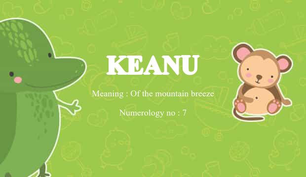 keanu name meaning