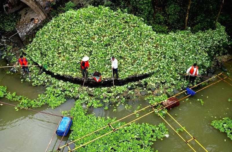 CHINA-GUANGXI-LIUZHOU-WATER ENVIRONMENT