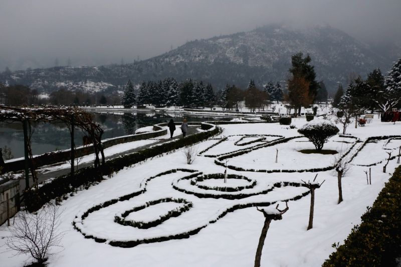 A view of snow covered Botanical Garden in Srinagar(Image Source: IANS News)
