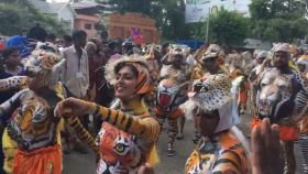 Onam: Women participate in famous tiger-themed dance in Kerala's Thrissur district
