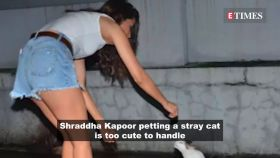 Shraddha Kapoor can't stop herself from playing with a cute stray cat
