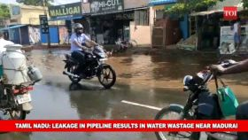 Tamil Nadu: Leakage in pipeline results in water wastage near Madurai